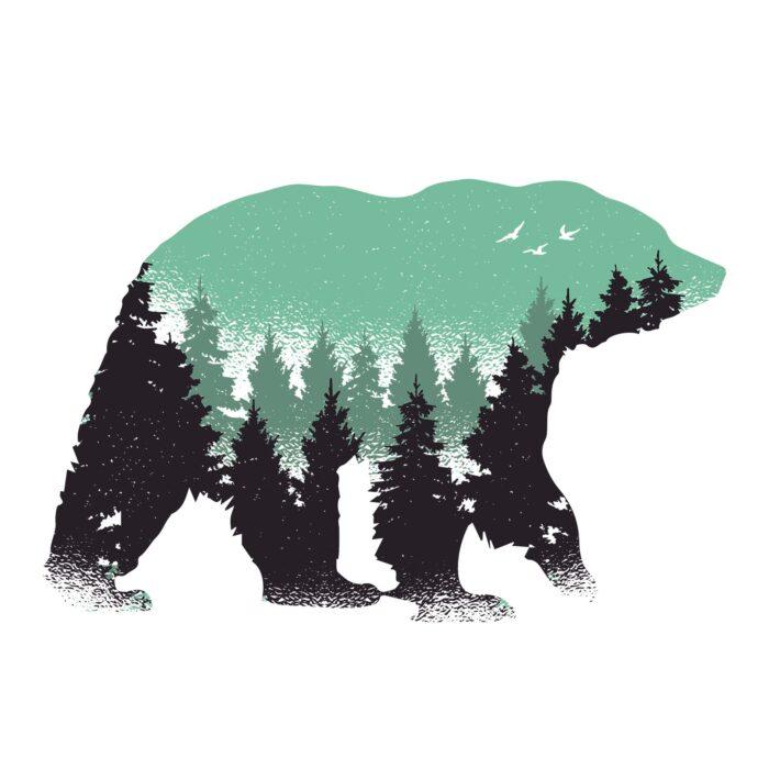 Bear Forest Men's Round Neck Regular Fit T-Shirt