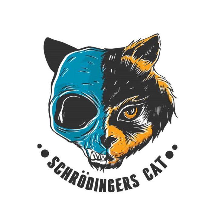 Schrodinger's Cat Skull Men's Round Neck Regular Fit T-Shirt